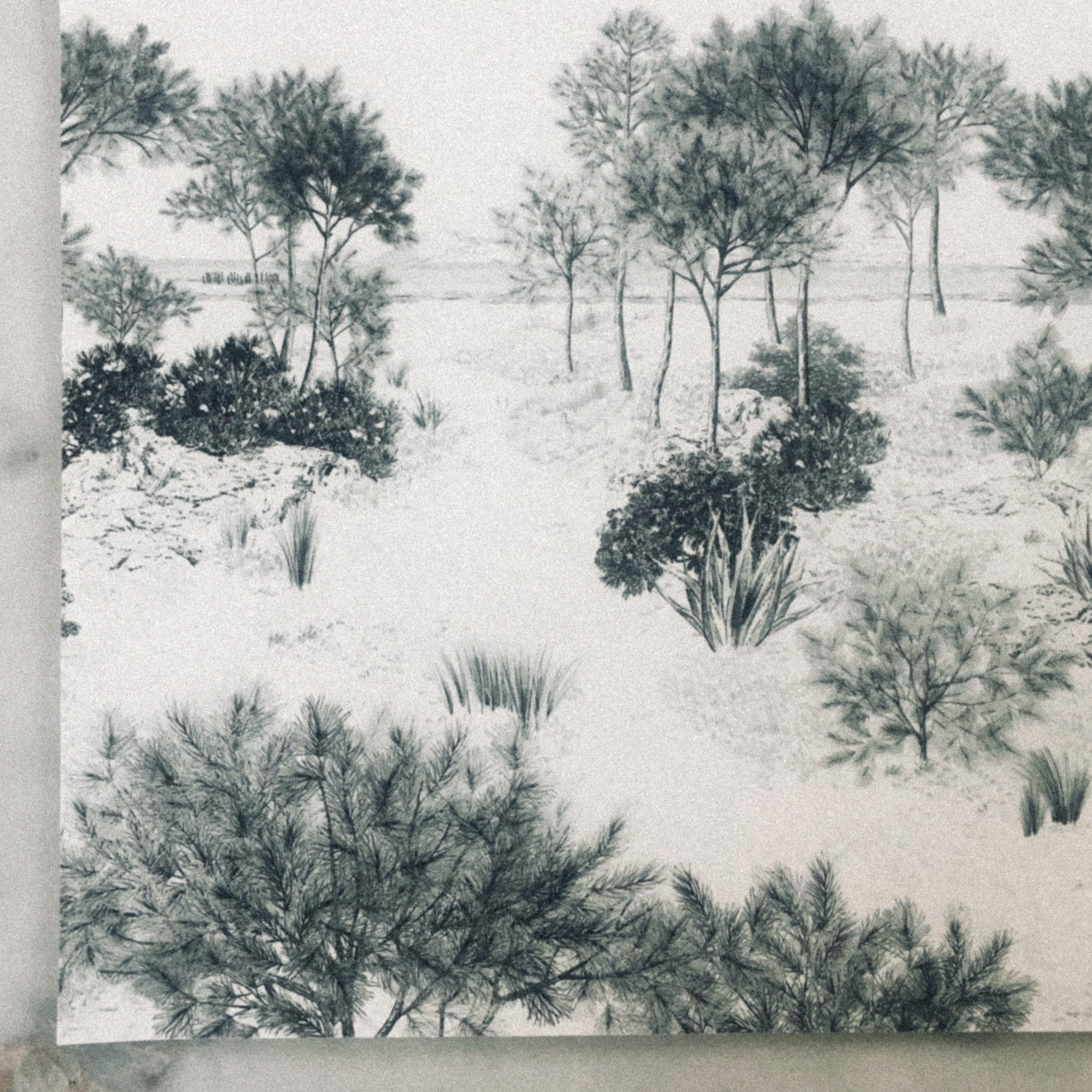 papier peint dunes gris